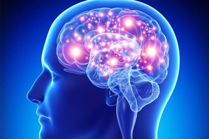 Neurociência e educação: um novo caminho para o entendimento sobre as dificuldades de aprendizagem